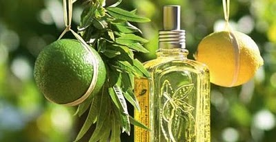 With notes of Verbena, Lemon and Grapefruit - its perfect for the Summer sun.