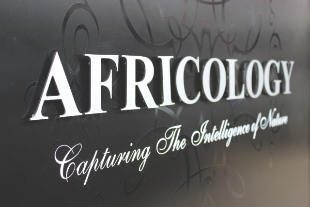 Africology Opens its doors in Parkhhurst